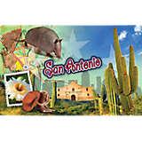 Texas - San Antonio Cactus