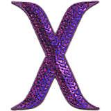 INITIAL-X