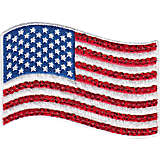 Sequin American Flag