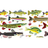 Freshwater Fish and Lure