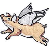 Ohio  - Flying Pig Cincinnati