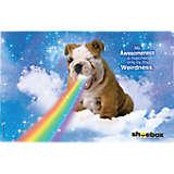 Hallmark Shoebox - Dog Rainbow