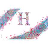 INITIAL-H