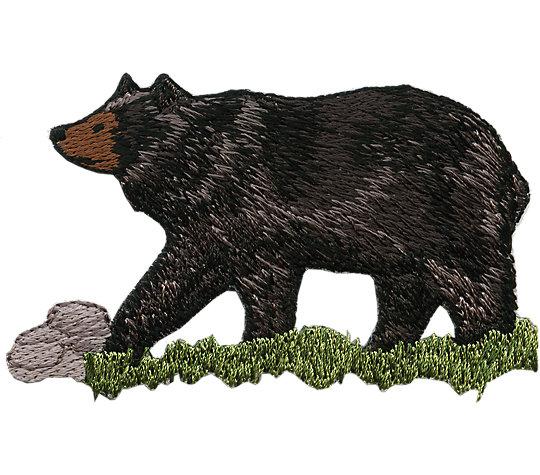 Black Bear image number 1