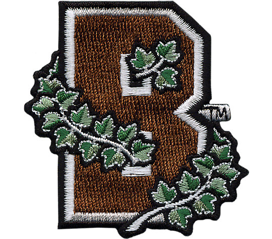 Brown Bears Logo image number 1