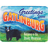 Tennessee - Gatlinburg Postcard
