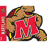 Maryland Terrapins Mascot Colossal