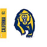 Cal Bears Colossal Bear