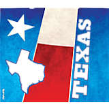 Texas State Flag Colossal