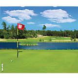 Golf Course Scene