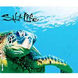 Salt Life® - Turtle