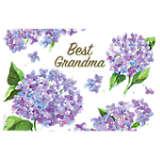 Grandma Purple Hydrangea