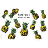 Rhode Island - Pineapple Newport
