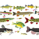 Freshwater Fish and Lures