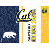 Cal Bears College Pride