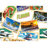 Florida Collage