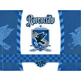 Harry Potter™ - Ravenclaw Quidditch