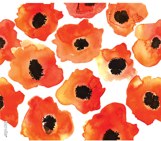 Watercolor Poppy image number 1