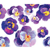 Watercolor Pansy
