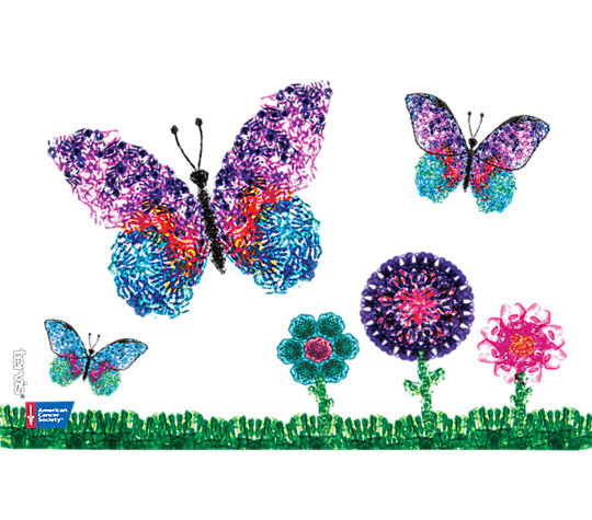 American Cancer Society - Butterflies image number 1