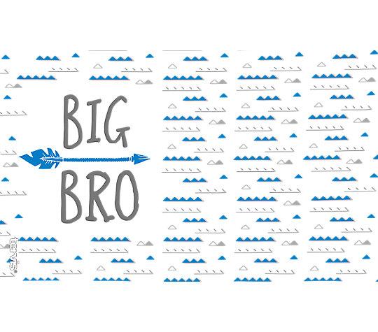 Big Bro image number 1