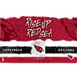 NFL® Arizona Cardinals NFL Statement