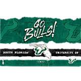 USF Bulls College Statement