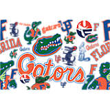 Florida Gators All Over