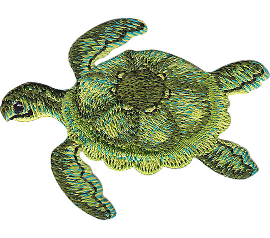 Green Turtle image number 1