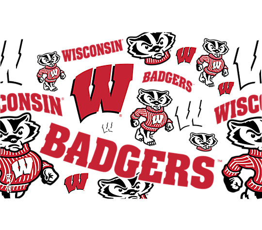 Wisconsin Badgers All Over image number 1