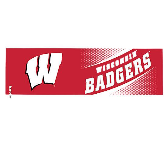 Wisconsin Badgers Legend image number 1