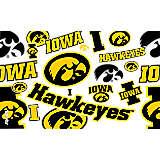 Iowa Hawkeyes All Over