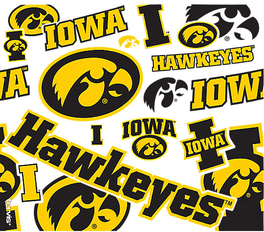 Iowa Hawkeyes All Over image number 1