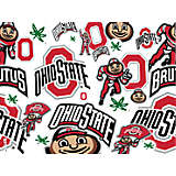 Ohio State Buckeyes All Over