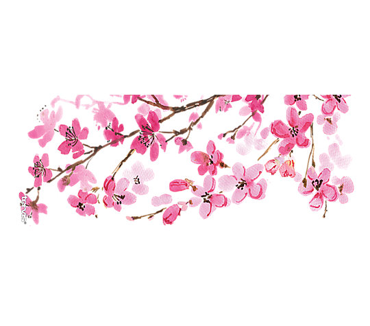 Japanese Cherry Blossom image number 1