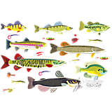 Stainless Steel Tumbler, Freshwater Fish and Lures