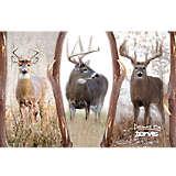 Stainless Steel Tumbler, Deer Trio