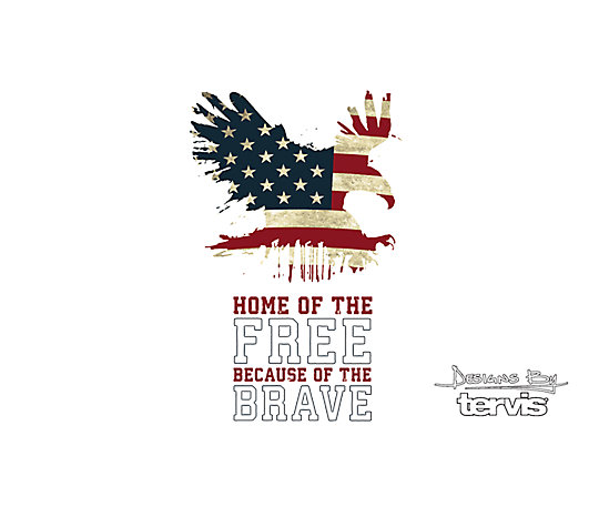 Home of the Free Because of the Brave image number 1