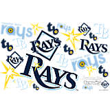 MLB® Stainless Steel Tumbler, Tampa Bay Rays™ All Over