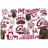 Montana Grizzlies All Over