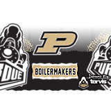 Stainless Steel Tumbler, Purdue Boilermakers Knockout