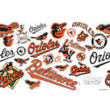 MLB® Stainless Steel Tumbler, Baltimore Orioles™ All Over