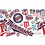 MLB® Stainless Steel Tumbler, Minnesota Twins™ All Over