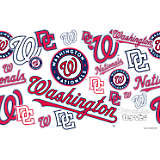 MLB® Stainless Steel Tumbler, Washington Nationals™