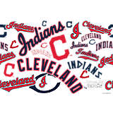 MLB® Stainless Steel Tumbler, Cleveland Indians™