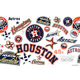 MLB® Stainless Steel Tumbler, Houston Astros™ All Over