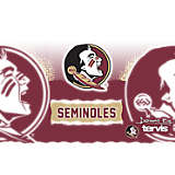 Stainless Steel Tumbler, Florida State Seminoles Knockout