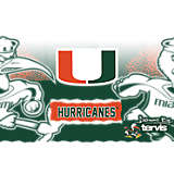 Stainless Steel Tumbler, Miami Hurricanes Knockout