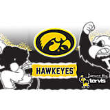 Stainless Steel Tumbler, Iowa Hawkeyes Knockout