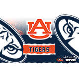 Stainless Steel Tumbler, Auburn Tigers Knockout